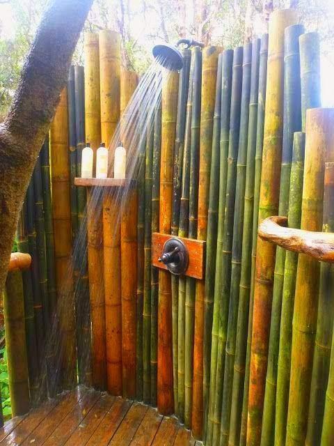 Vendo canne di bambù bambu con diametro da 1 a 10 cm.