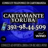 YORUBA', IL CARTOMANTE